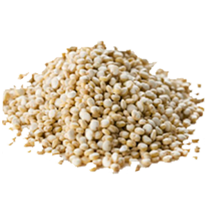 Hydrolyzed Quinoa